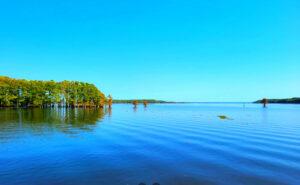 Caddo-Lake-Fishing-Report-Guide-LA-TX-01