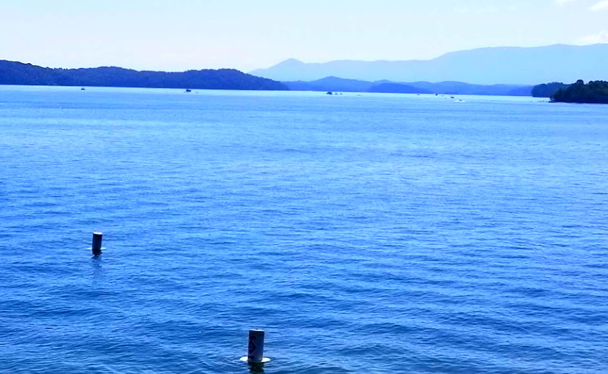 Douglas-Lake-Fishing-Report-Guide-Tennessee-TN-02