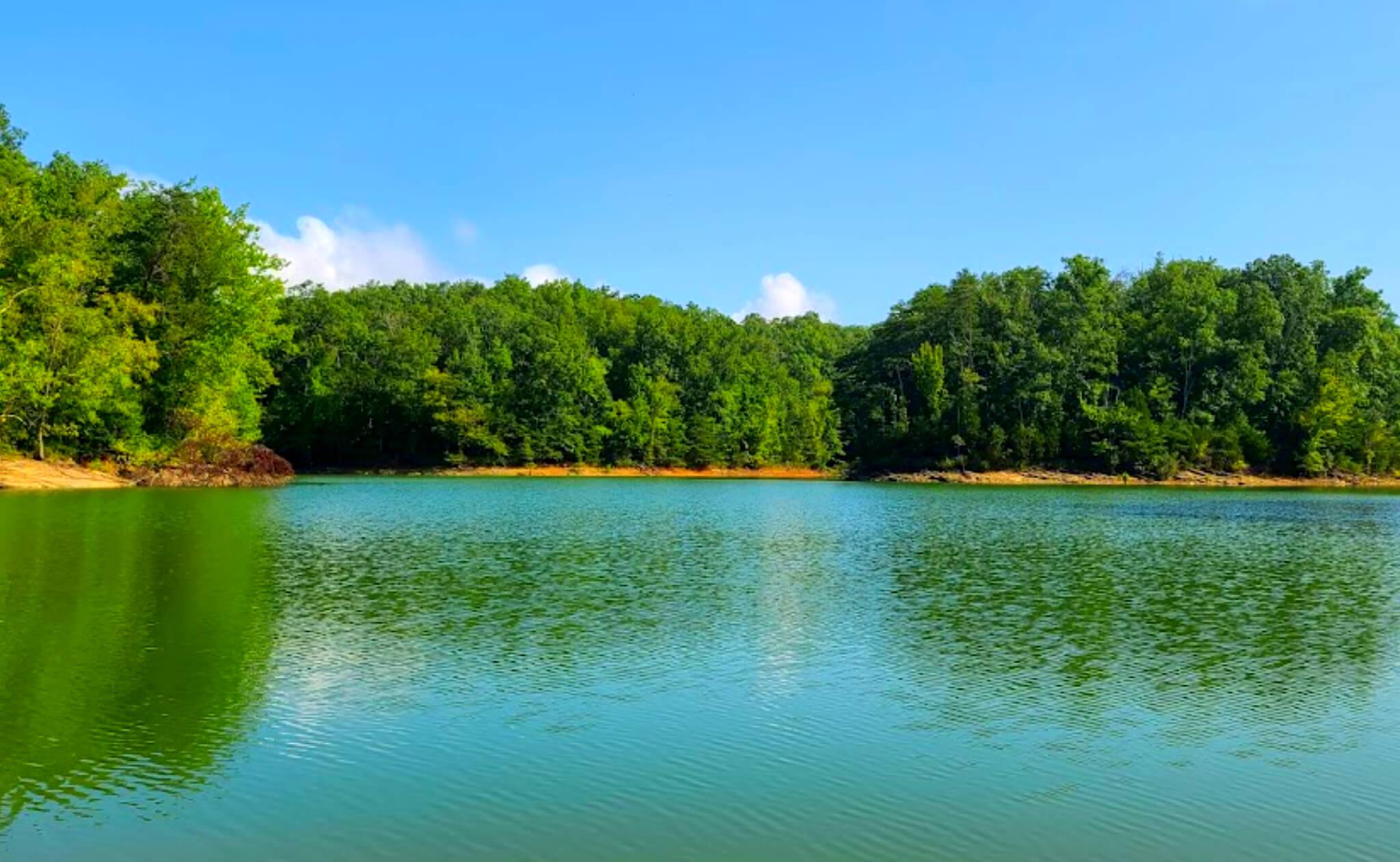 Douglas-Lake-Fishing-Report-Guide-Tennessee-TN-03