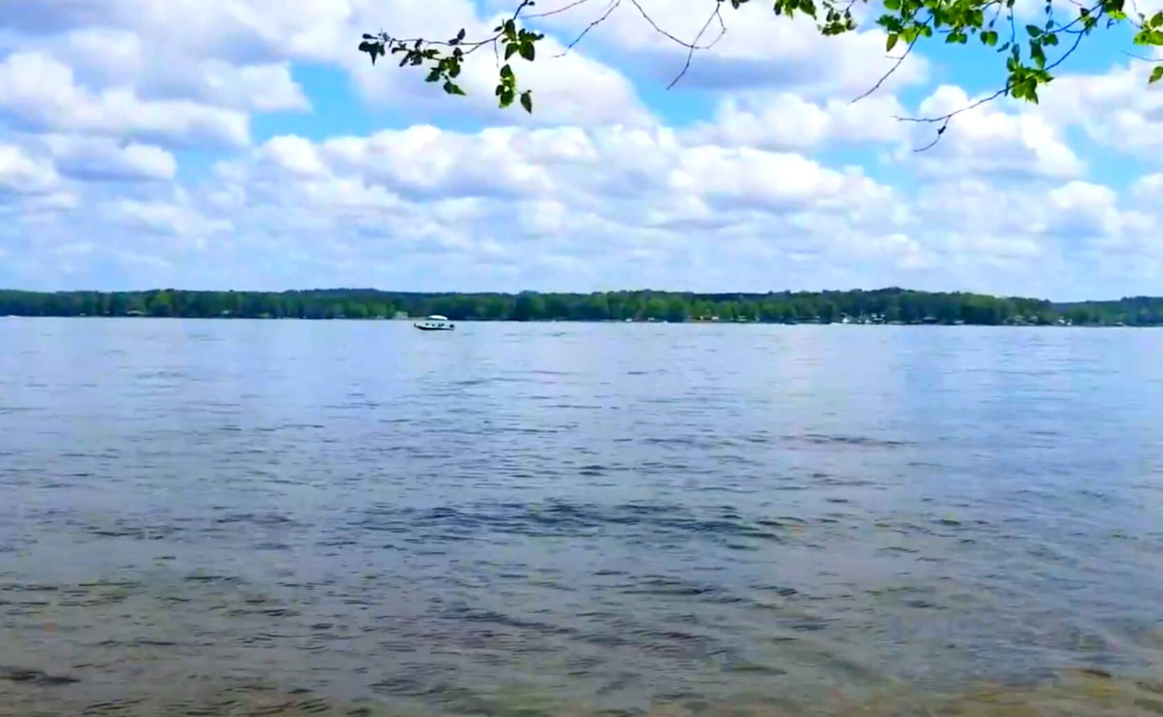 Greenwood-Lake-Fishing-Guide-Report-South-Carolina-05