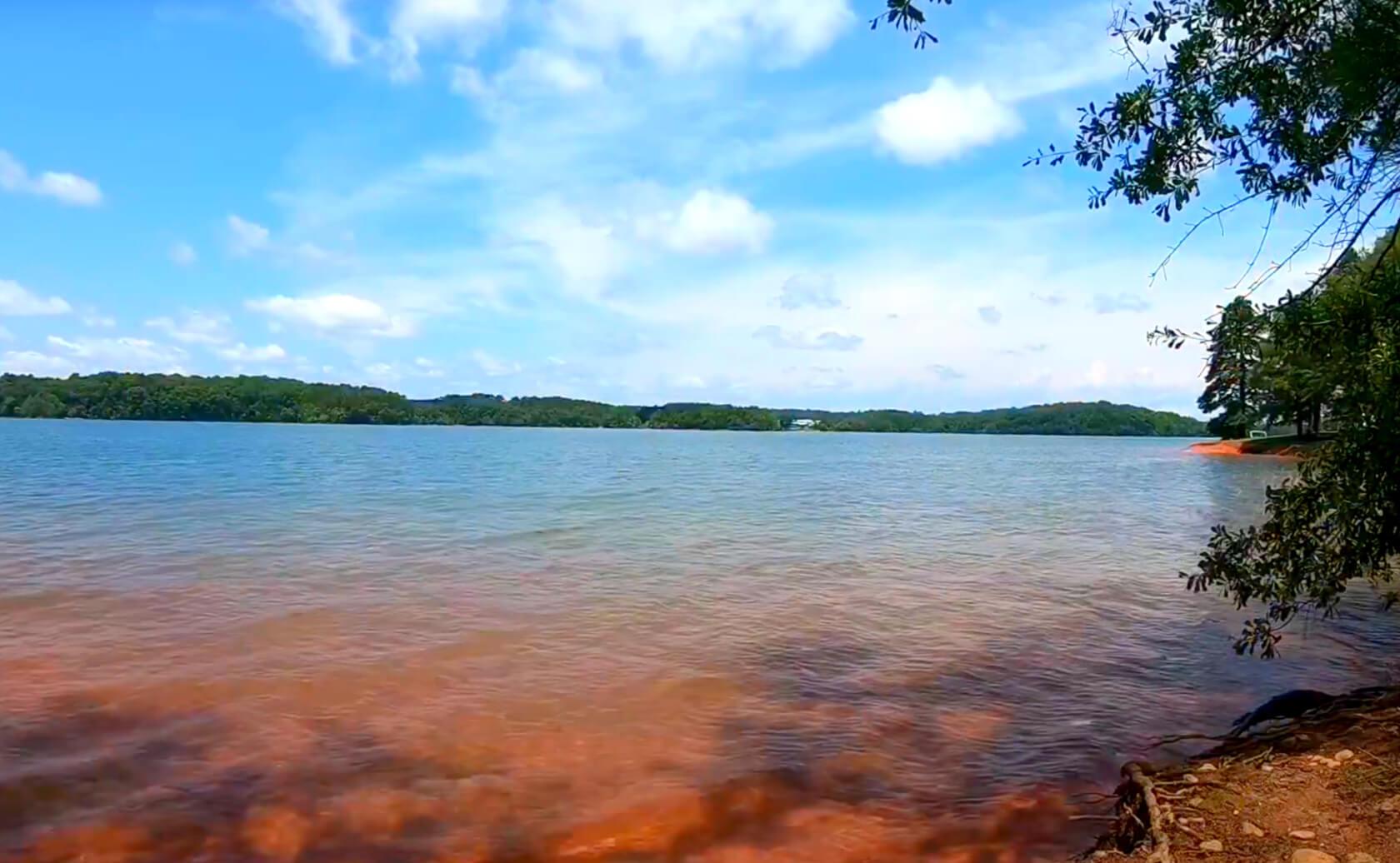 Hartwell-Lake-Fishing-Guide-Report-South-Carolina-04