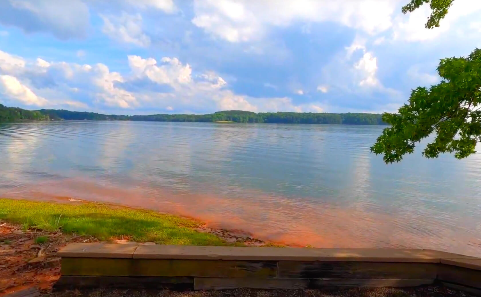 Hartwell-Lake-Fishing-Guide-Report-South-Carolina-05