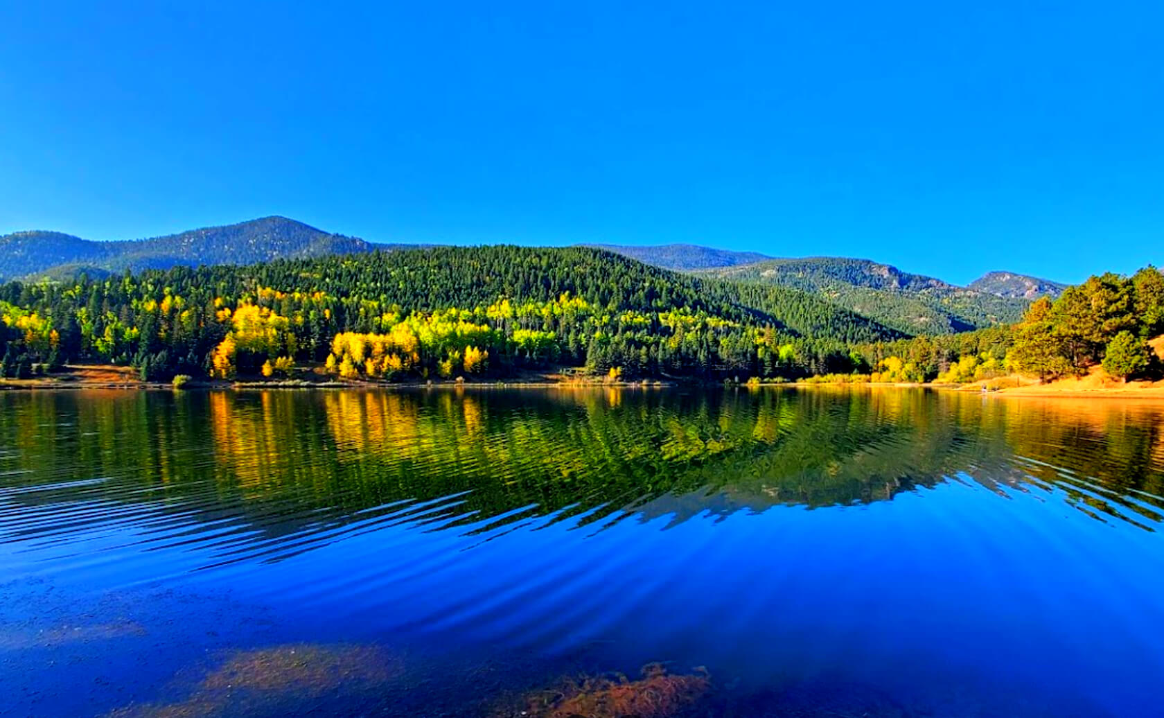 Isabel-Lake-Fishing-Guide-Report-Colorado-03