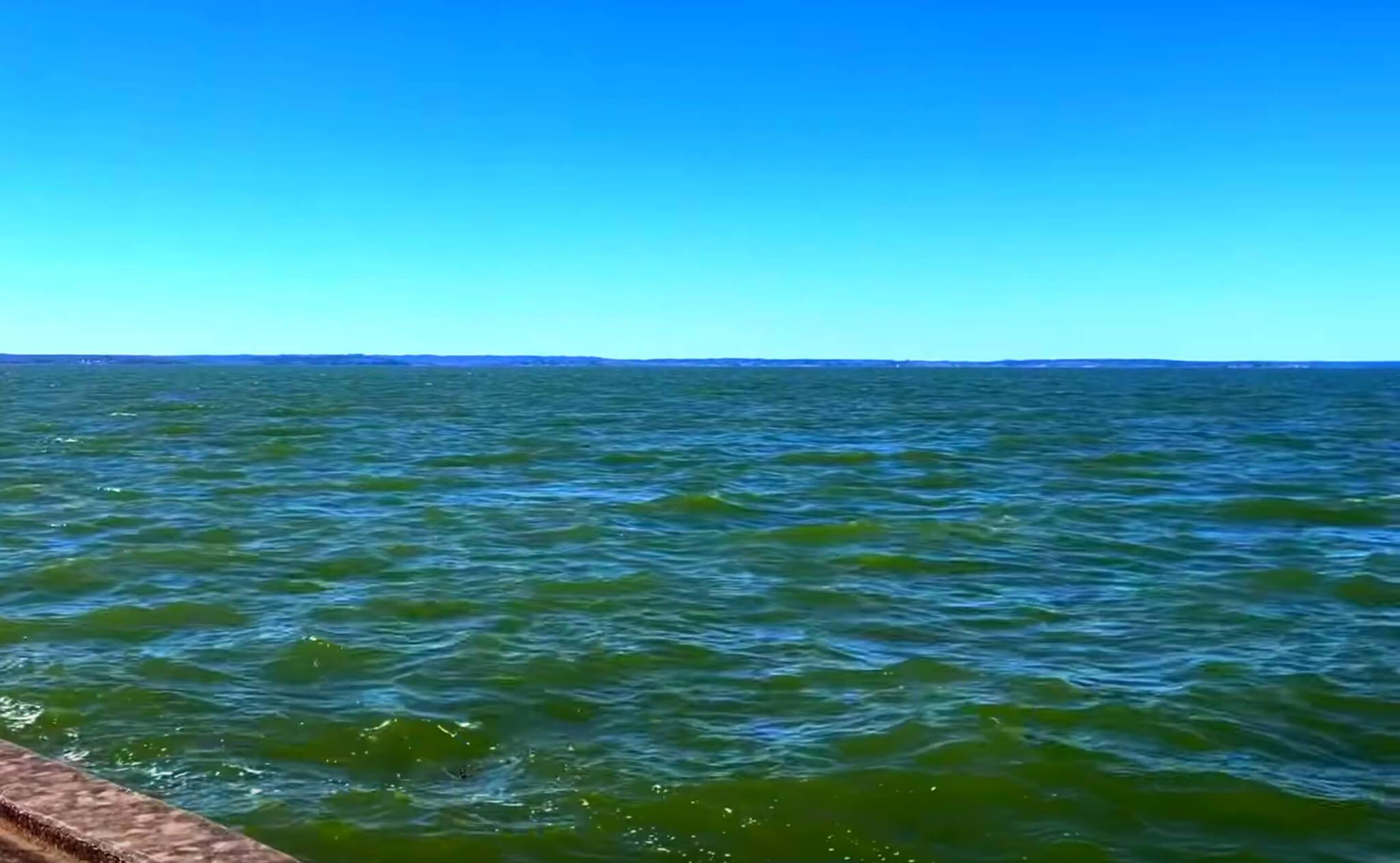Livingston-Lake-Fishing-Report-Guide-Texas-TX-02