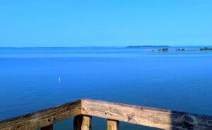 Livingston-Lake-Fishing-Report-Guide-Texas-TX-05