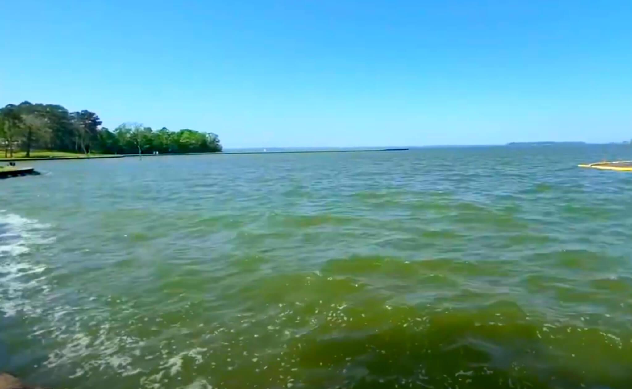 Livingston-Lake-Fishing-Report-Guide-Texas-TX-08