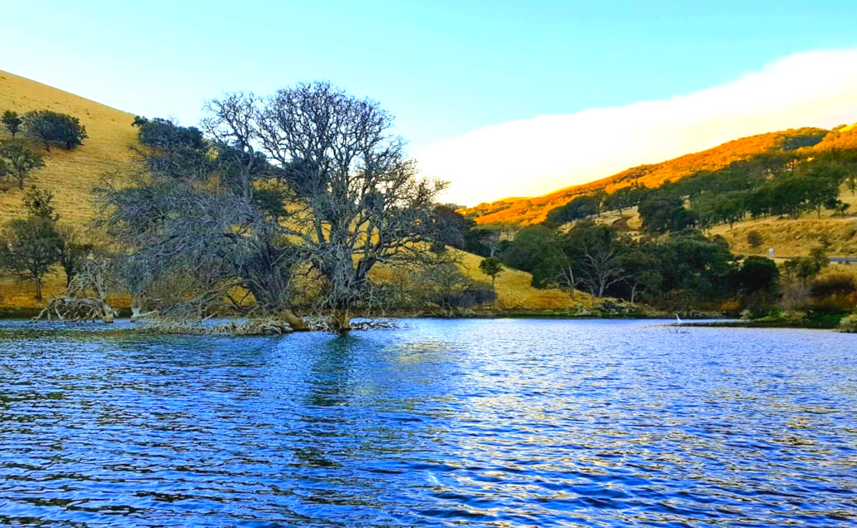 Los-Vaqueros-Reservoir-Lake-Fishing-Guide-Report-California-03