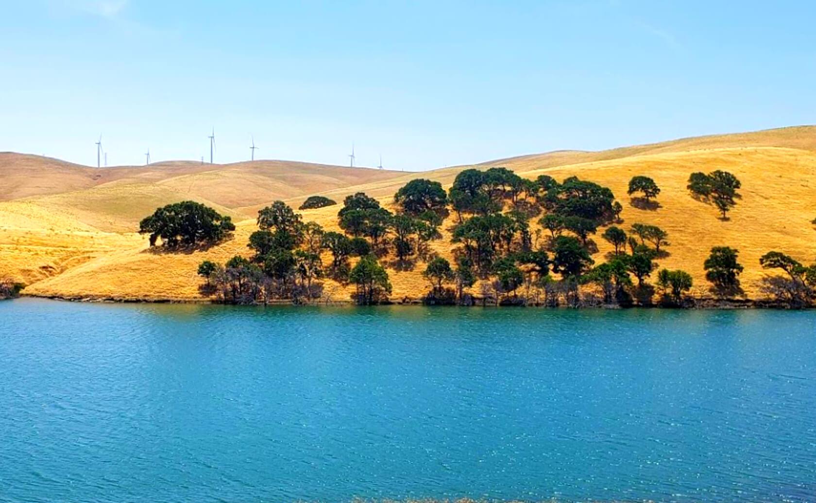 Los-Vaqueros-Reservoir-Lake-Fishing-Guide-Report-California-05