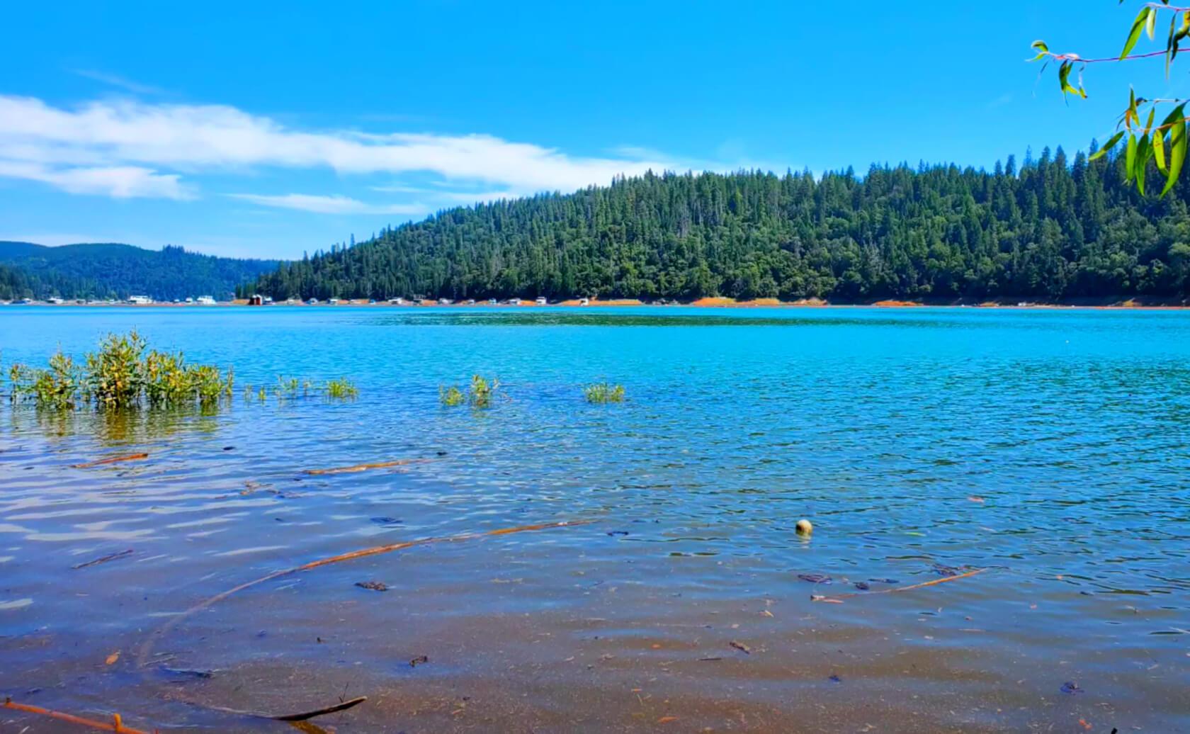 New-Bullards-Bar-Reservoir-Lake-Fishing-Guide-Report-California-08