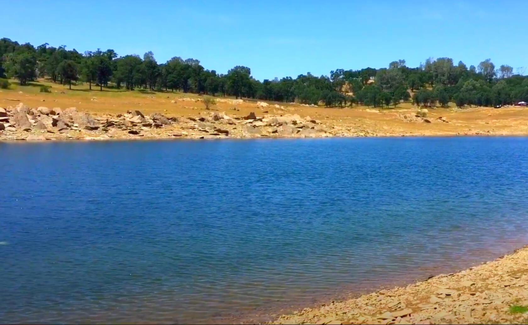 New-Hogan-Lake-Fishing-Guide-Report-California-07