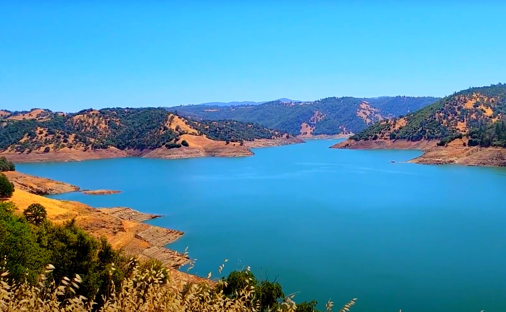New-Melones-Lake-Fishing-Guide-Report-California-11
