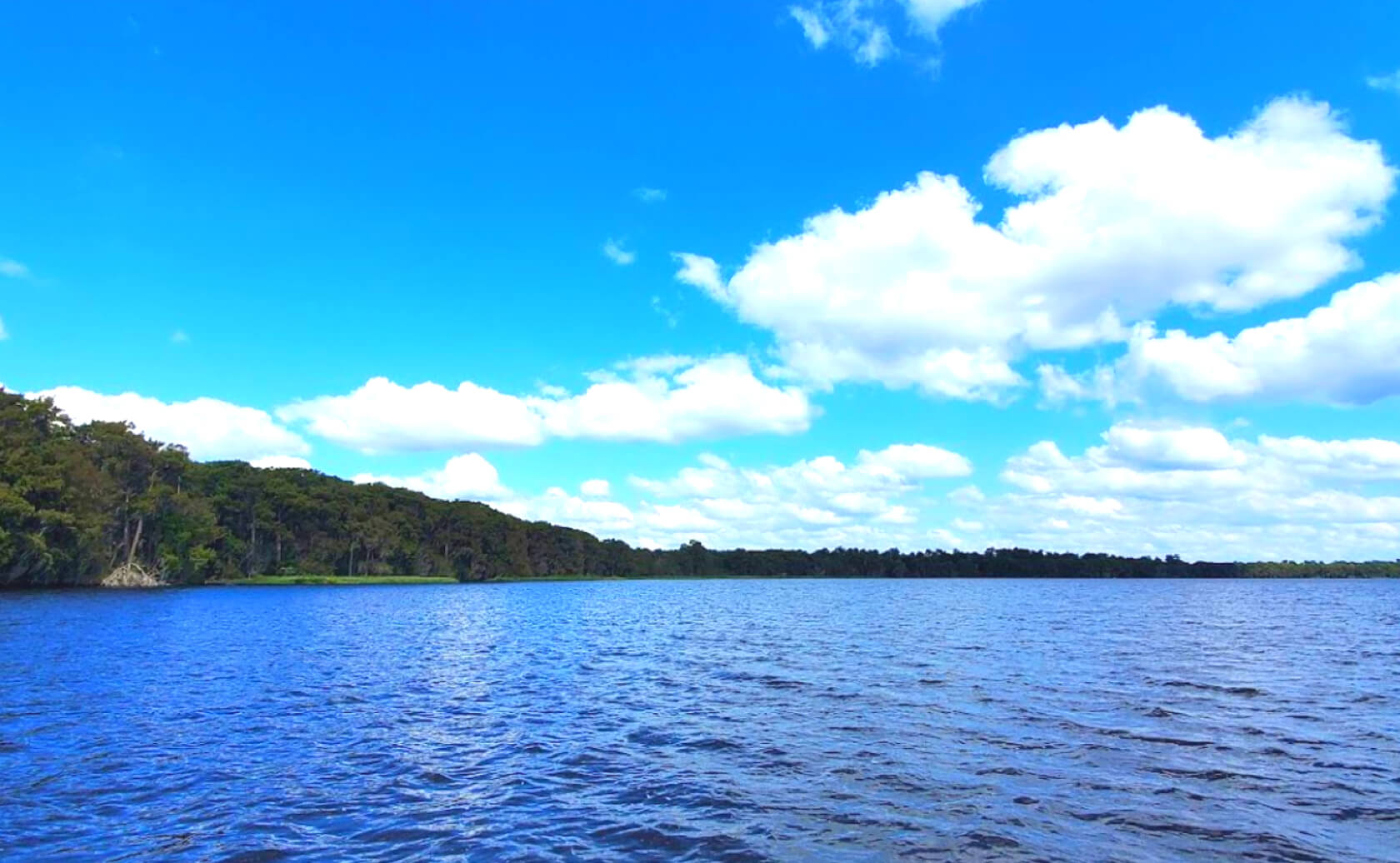 Newnans-Lake-Fishing-Guide-Report-Florida-02