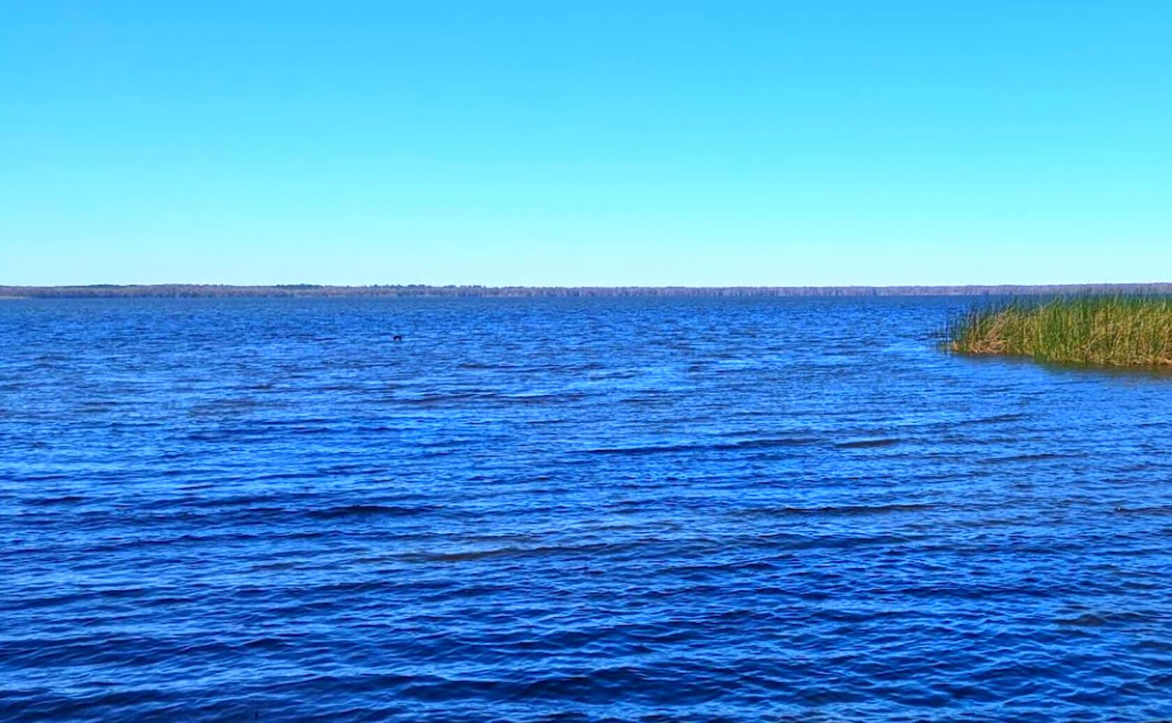 Newnans-Lake-Fishing-Guide-Report-Florida-03