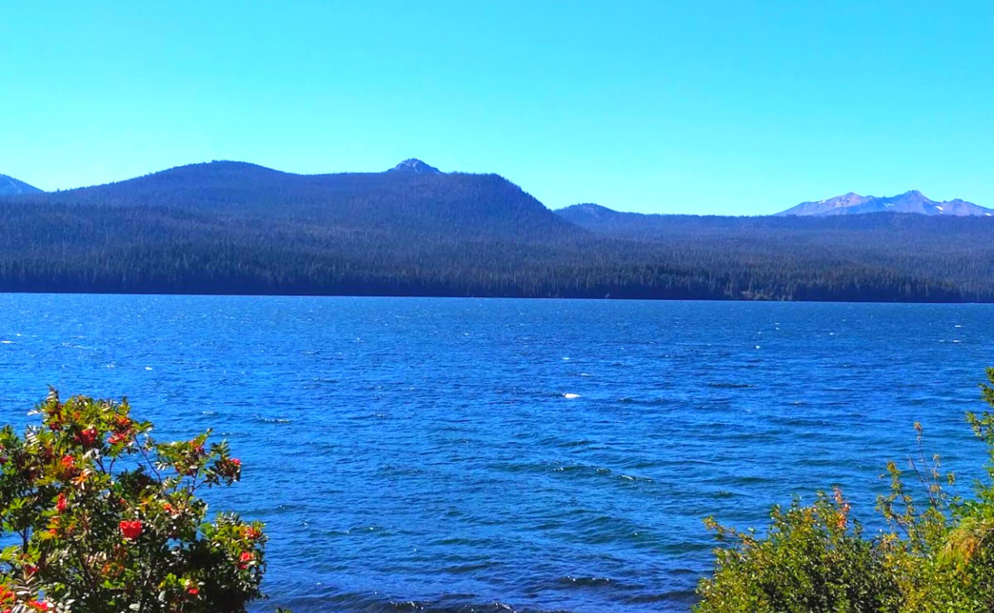 Odell-Lake-Fishing-Report-Guide-Oregon-02