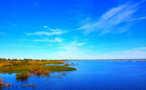 Okeechobee-Lake-Fishing-Guide-Report-Florida-01