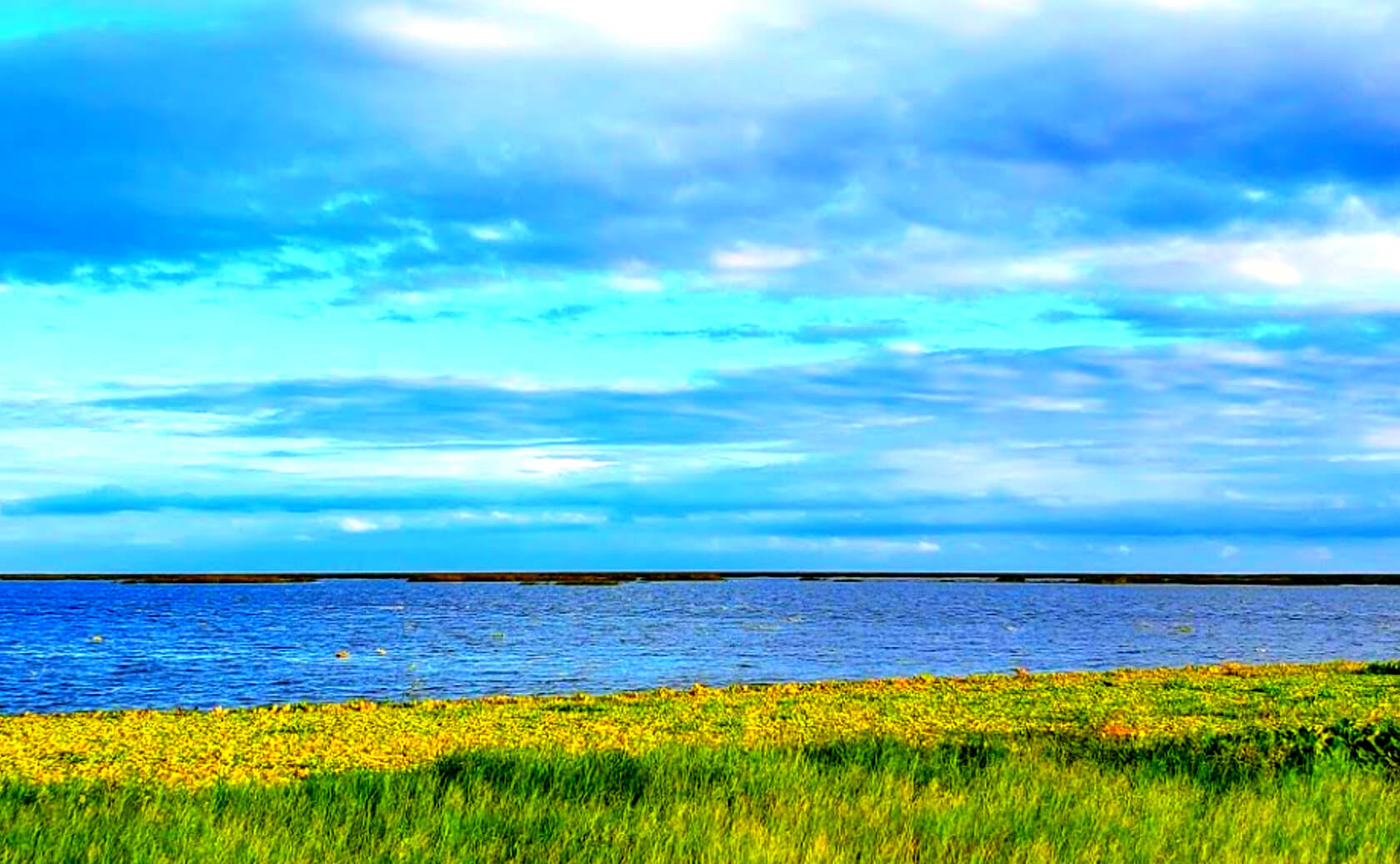 Okeechobee-Lake-Fishing-Guide-Report-Florida-03