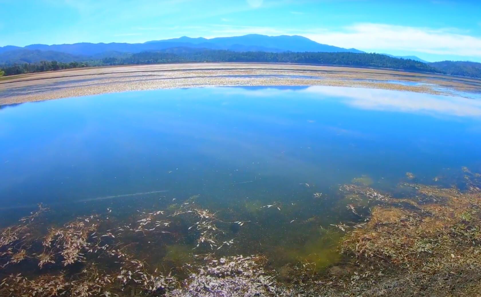 Pillsbury-Lake-Fishing-Guide-Report-California-03