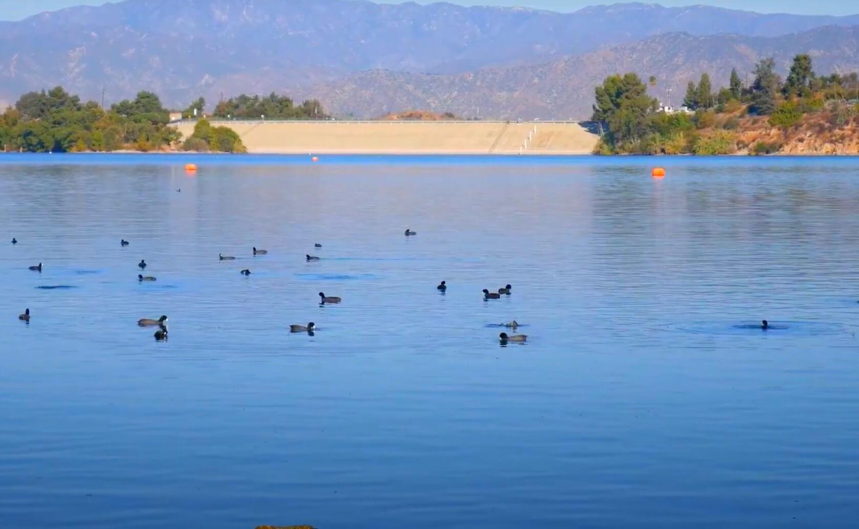 Puddingstone-Lake-Fishing-Guide-Report-California-07