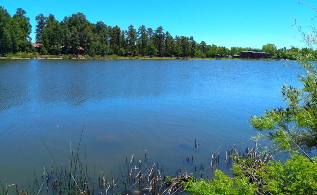 Rainbow-Lake-Fishing-Guide-Report-Arizona-01