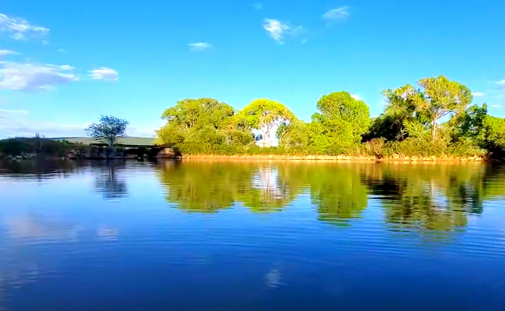 Rainbow-Lake-Fishing-Guide-Report-Arizona-05