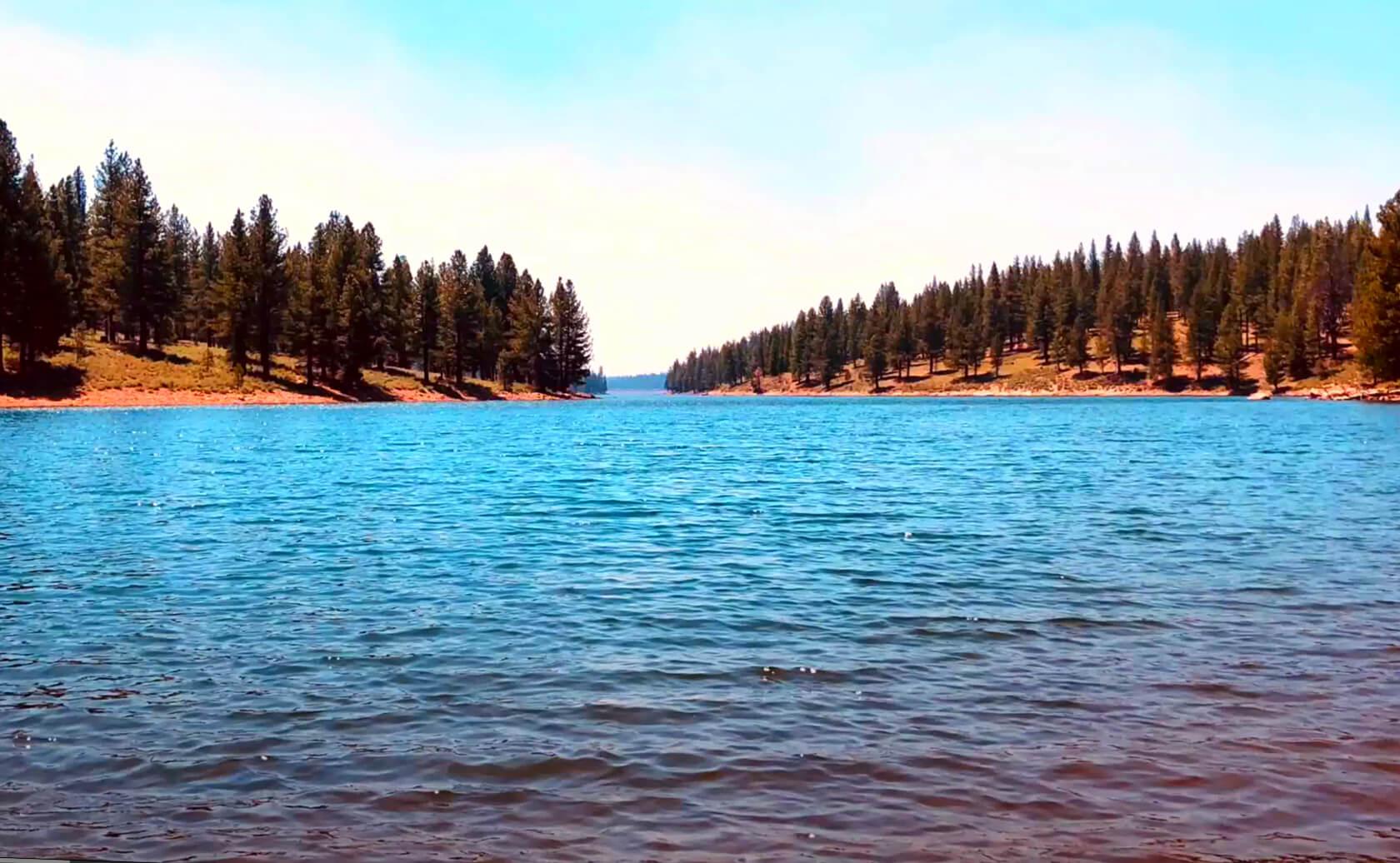Stampede-Lake-Fishing-Guide-Report-California-05