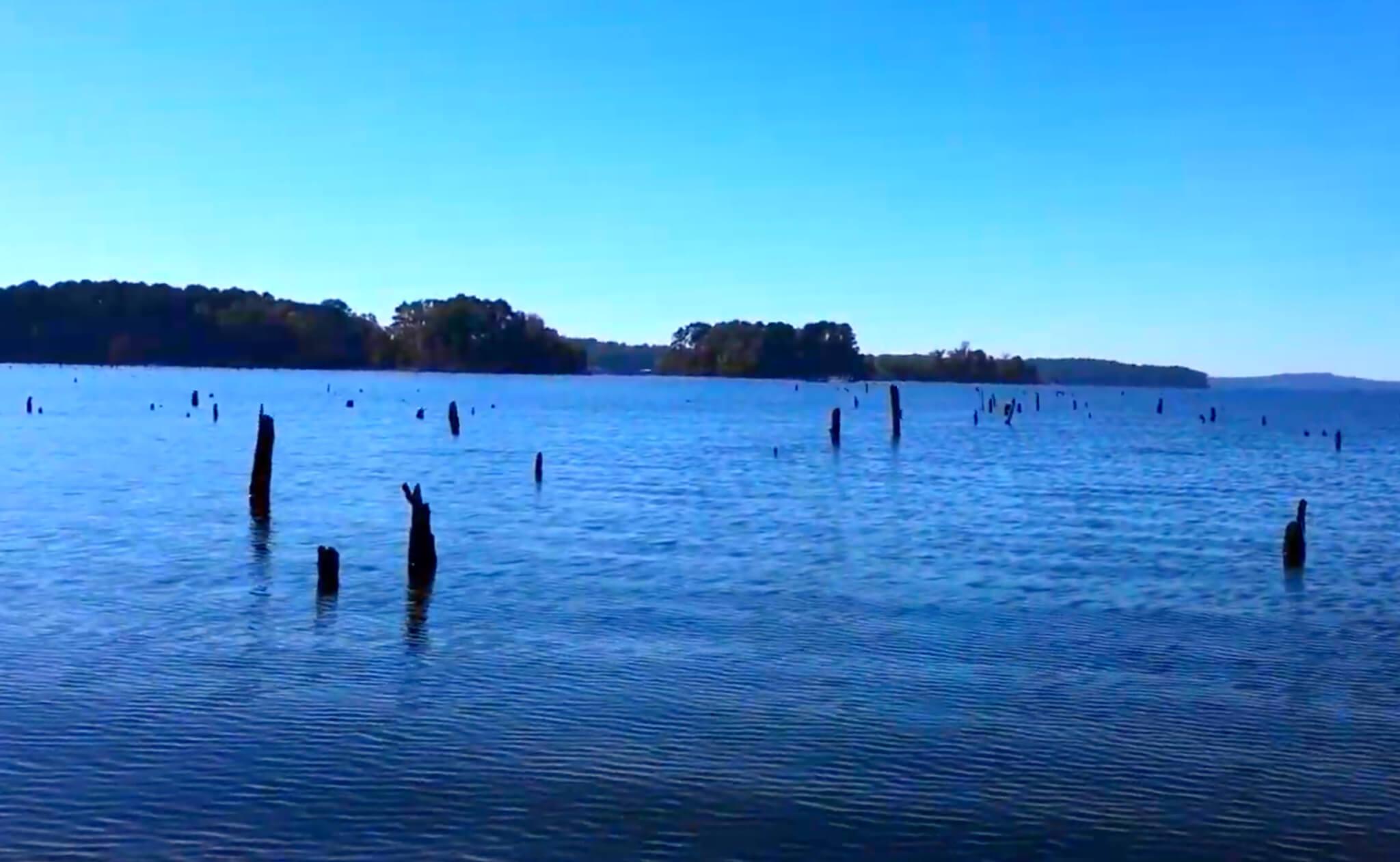 Toledo-Bend-Lake-Fishing-Report-Guide-LA-TX-06