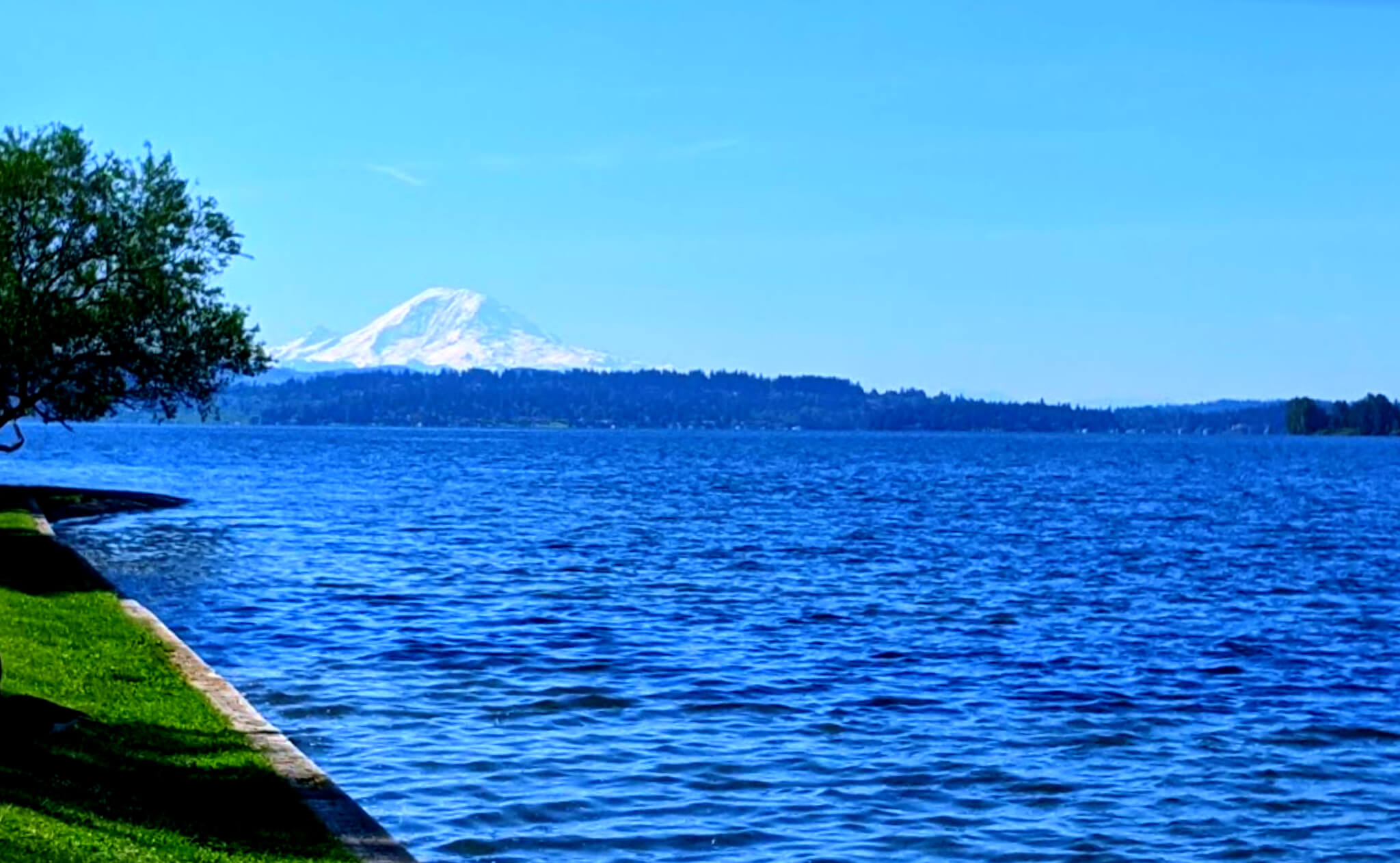 Washington-Lake-Fishing-Report-Guide-WA-04