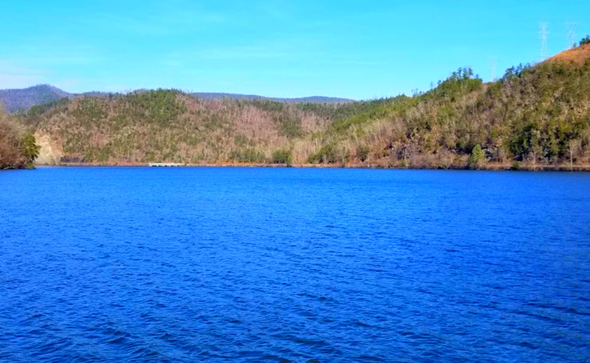 Calderwood-Lake-Fishing-Report-Guide-Tennessee-TN-02