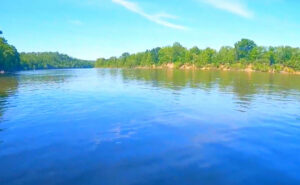 Cheatham-Lake-Fishing-Report-Guide-Tennessee-TN-01Cheatham-Lake-Fishing-Report-Guide-Tennessee-TN-02