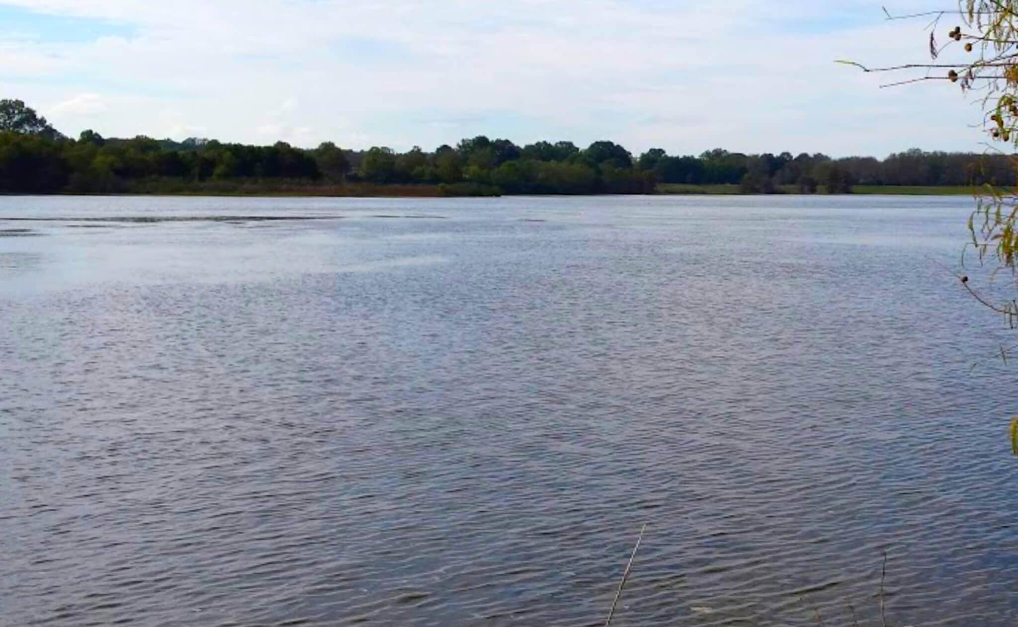 Sardis-Lake-Fishing-Report-Guide-Mississippi-MS-04