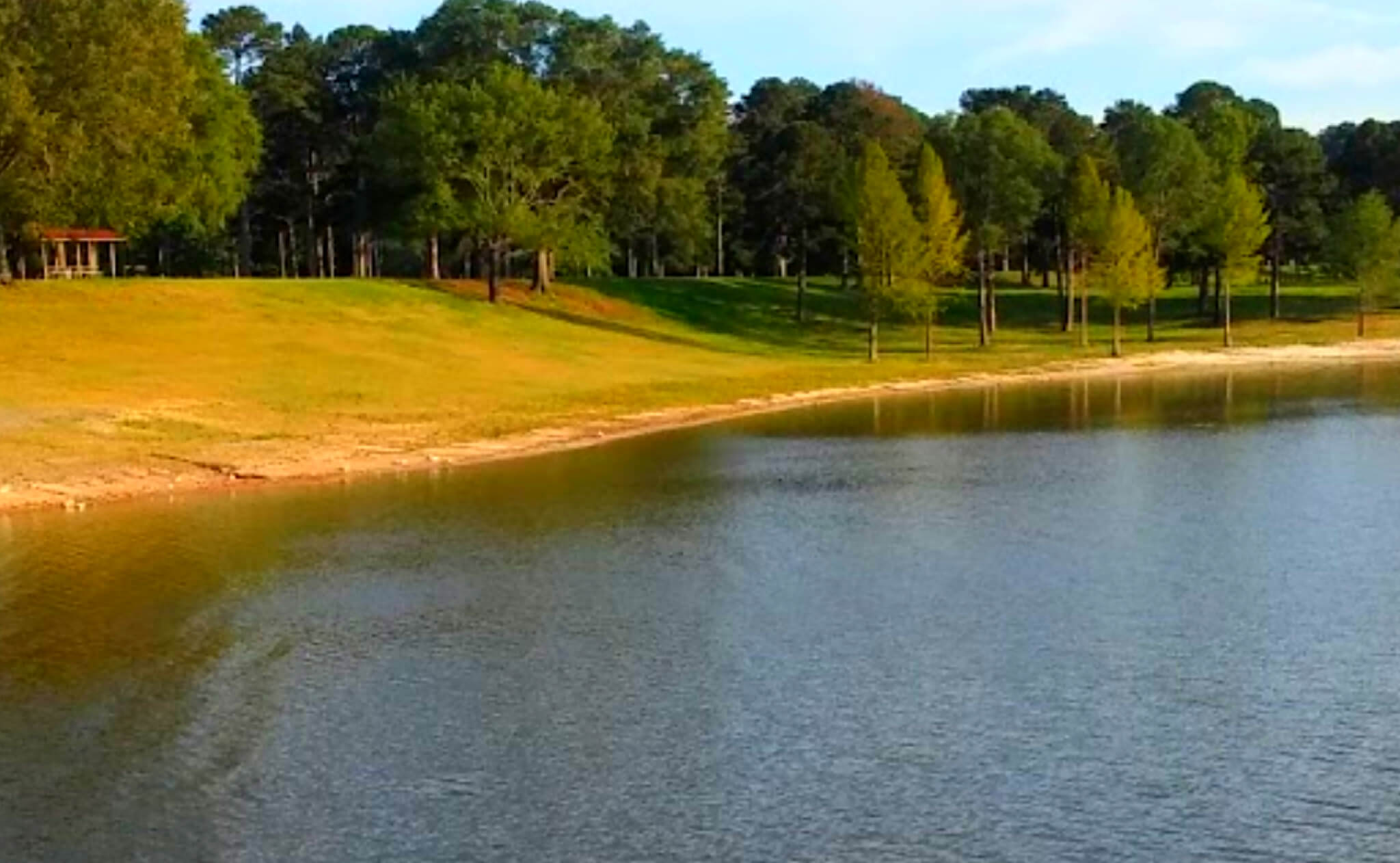 Sardis-Lake-Fishing-Report-Guide-Mississippi-MS-06