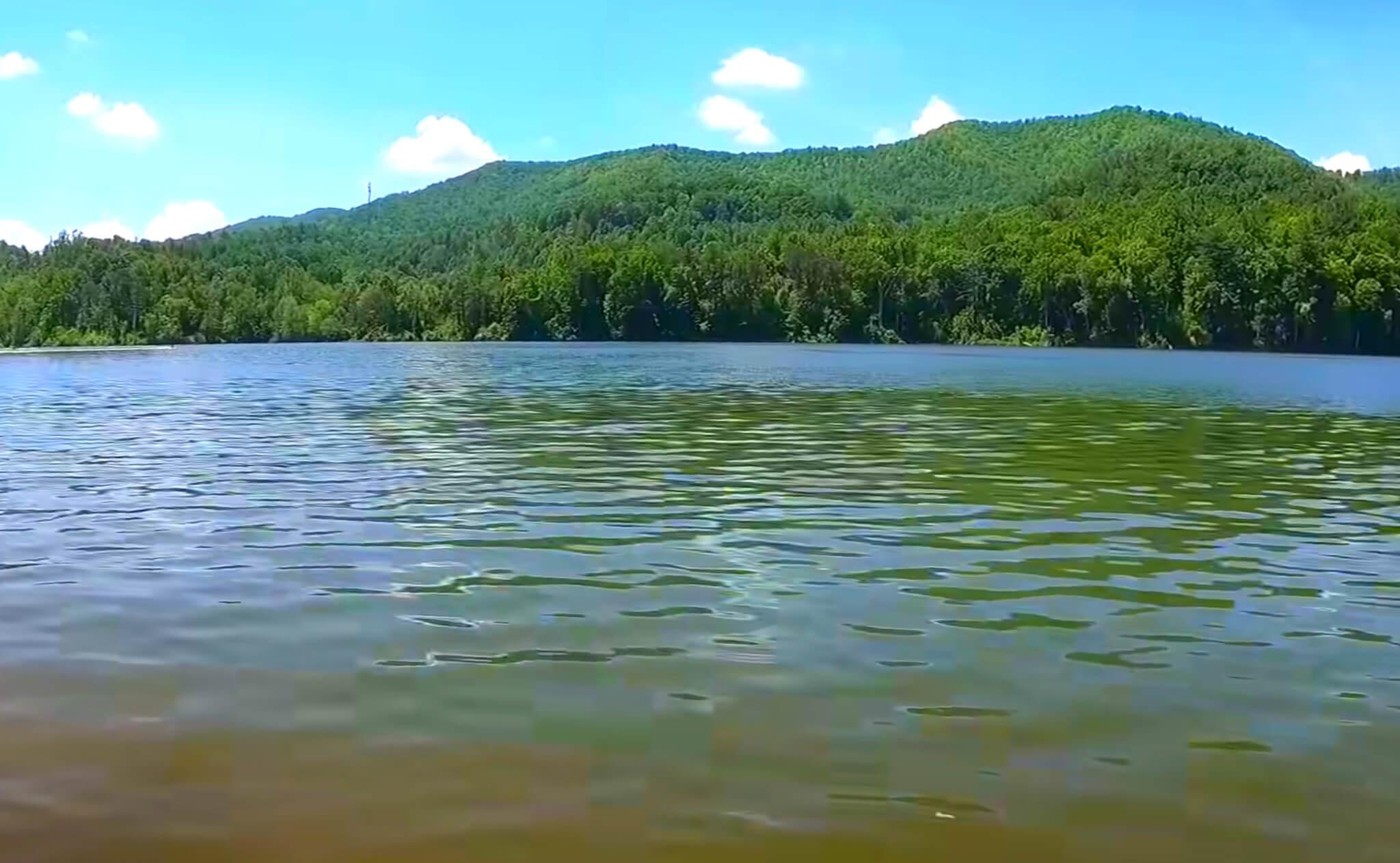 Watauga-Lake-Fishing-Report-Guide-Tennessee-TN-02